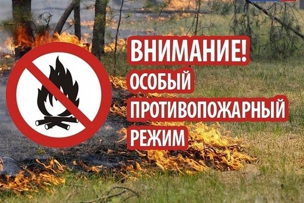 Об установлении особого противопожарного режима на территории Ростовской области